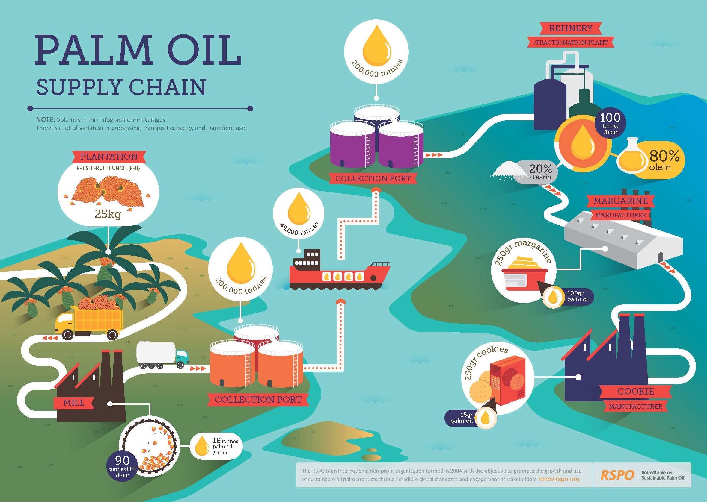 Palm oil supply chain