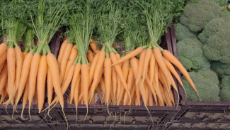 Unpacked carrottes