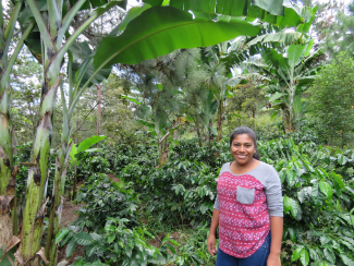 Woman standing infront of coffee plants